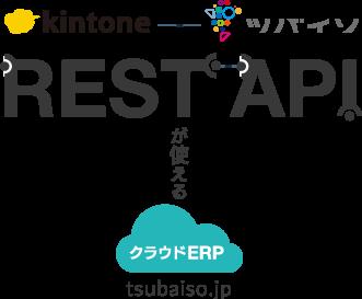 REST APIで世界中のAPPsとつながるクラウドERP ツバイソ