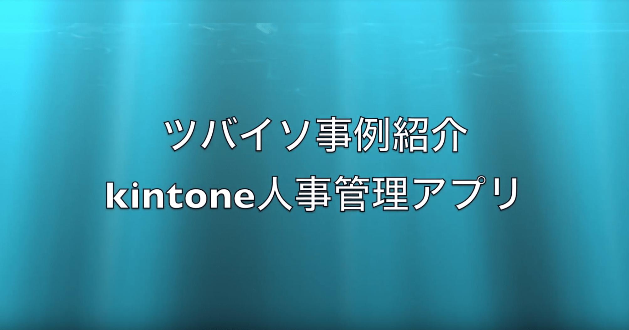 APIでツバイソERPをカスタマイズ。「kintoneで人事プロセスを最適化 Vol.2」